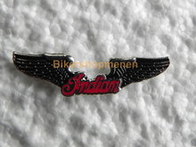 pin Indian wings